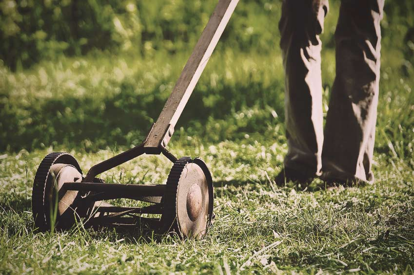 Projects: Mowing the lawn vs. cutting the grass